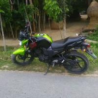 Yamaha fzs For Sale
