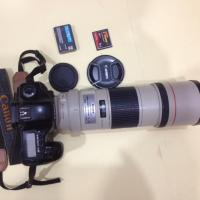 Canon EOS 5D with Canon EF 300mm f/4L IS USM Lens
