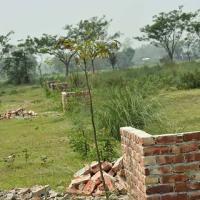 Ready Plot (land) jomi For Sale