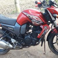 Yamaha Fzs full fresh Bike Sale