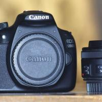 Canon only body or stm 50mm priem lens