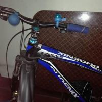 Phonix Cycle for sale