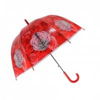 Fashionable Umbrella (SW1117)